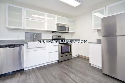 Mission Hill Apartment for rent 2 Bedrooms 1 Bath Boston - $2,900